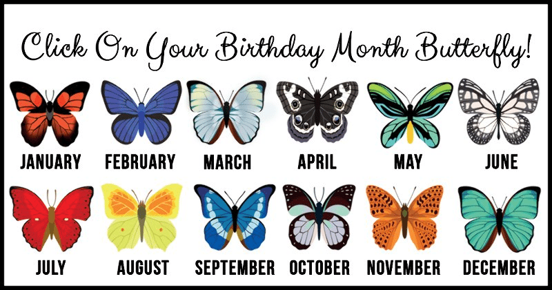 Check What Your Birth Month Butterflies Tells About You Banterfun