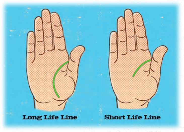 Palmistry reveals interesting things about your personality