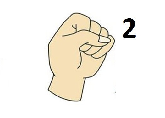 types of the fist with their significance so check yours