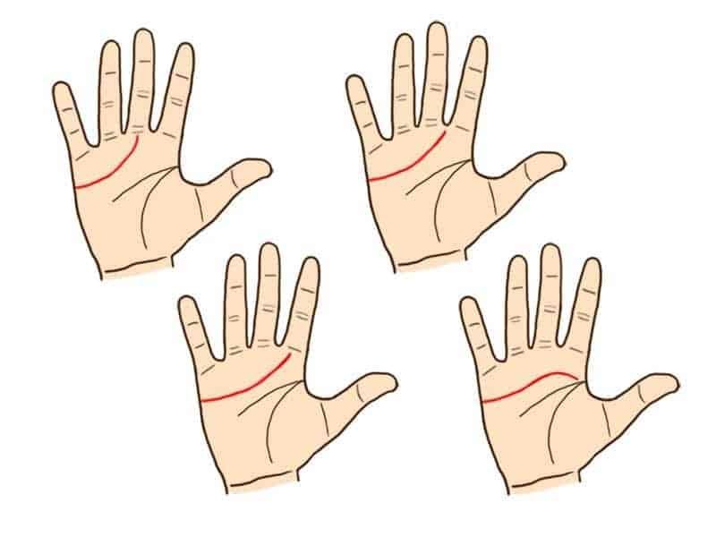 Your palm lines hold the secret of your life