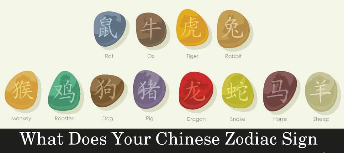 Your Personality Based On The Chinese Zodiac Signs - Banter fun