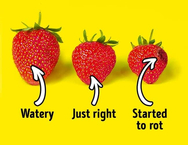 How to choose the right strawberry?