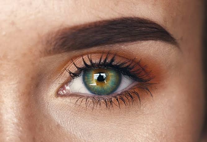 Essential Eyebrow Care Tips For Men And Women